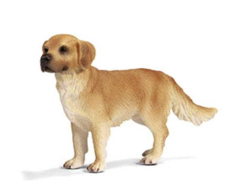 Zvířátka Schleich - zlatý retriever
