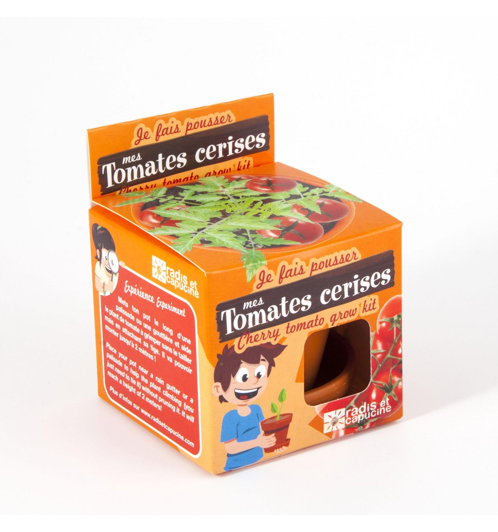 Mini zahrádka - Veselý květináč - Cherry rajčáta