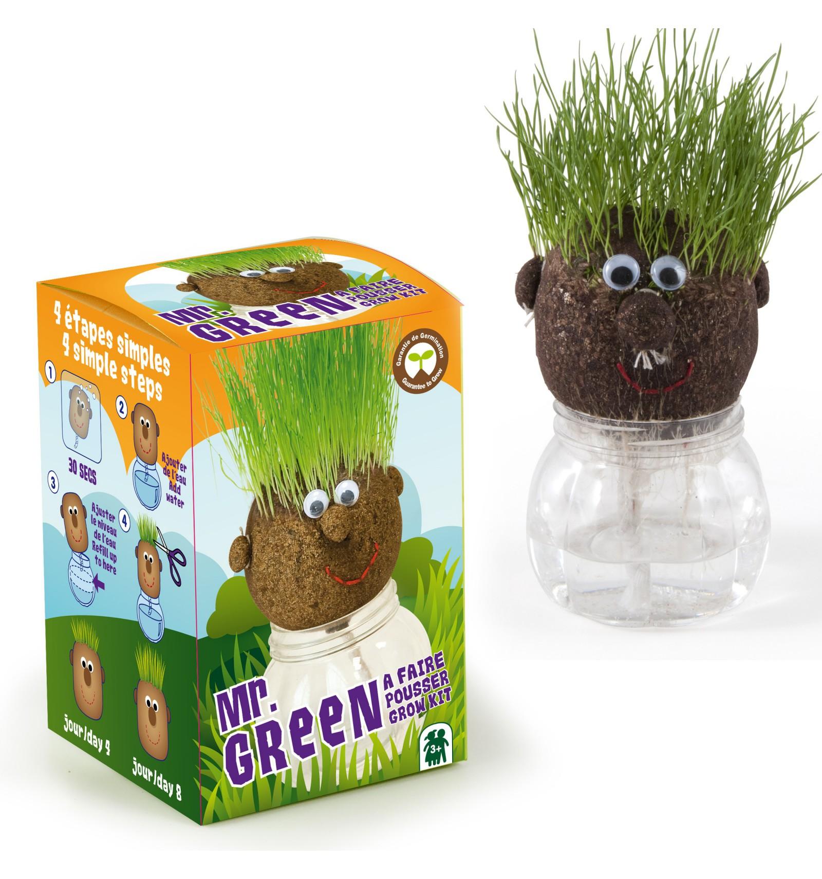 Mini zahrádka - Veselý květináč -  Mr. Green