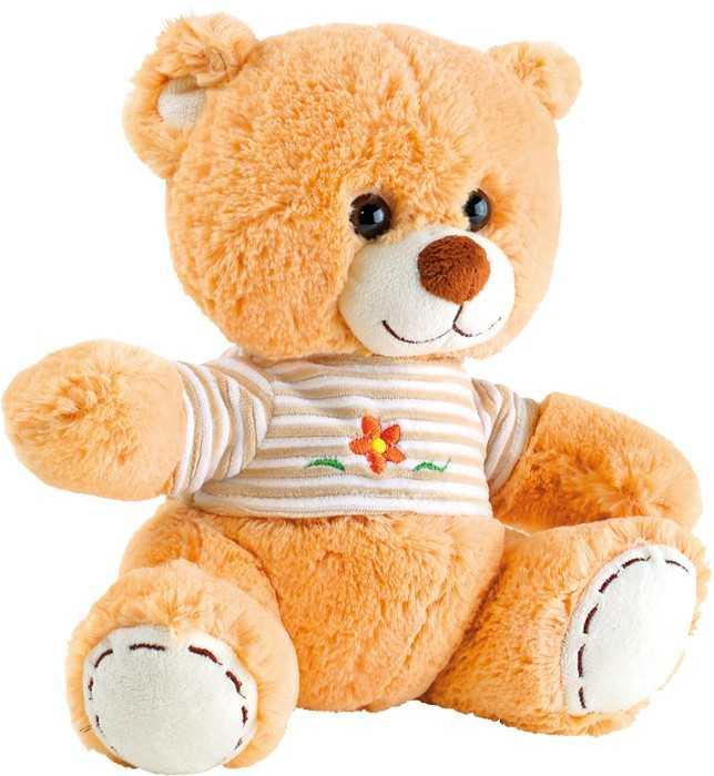 Plyšák Medvídek s tričkem