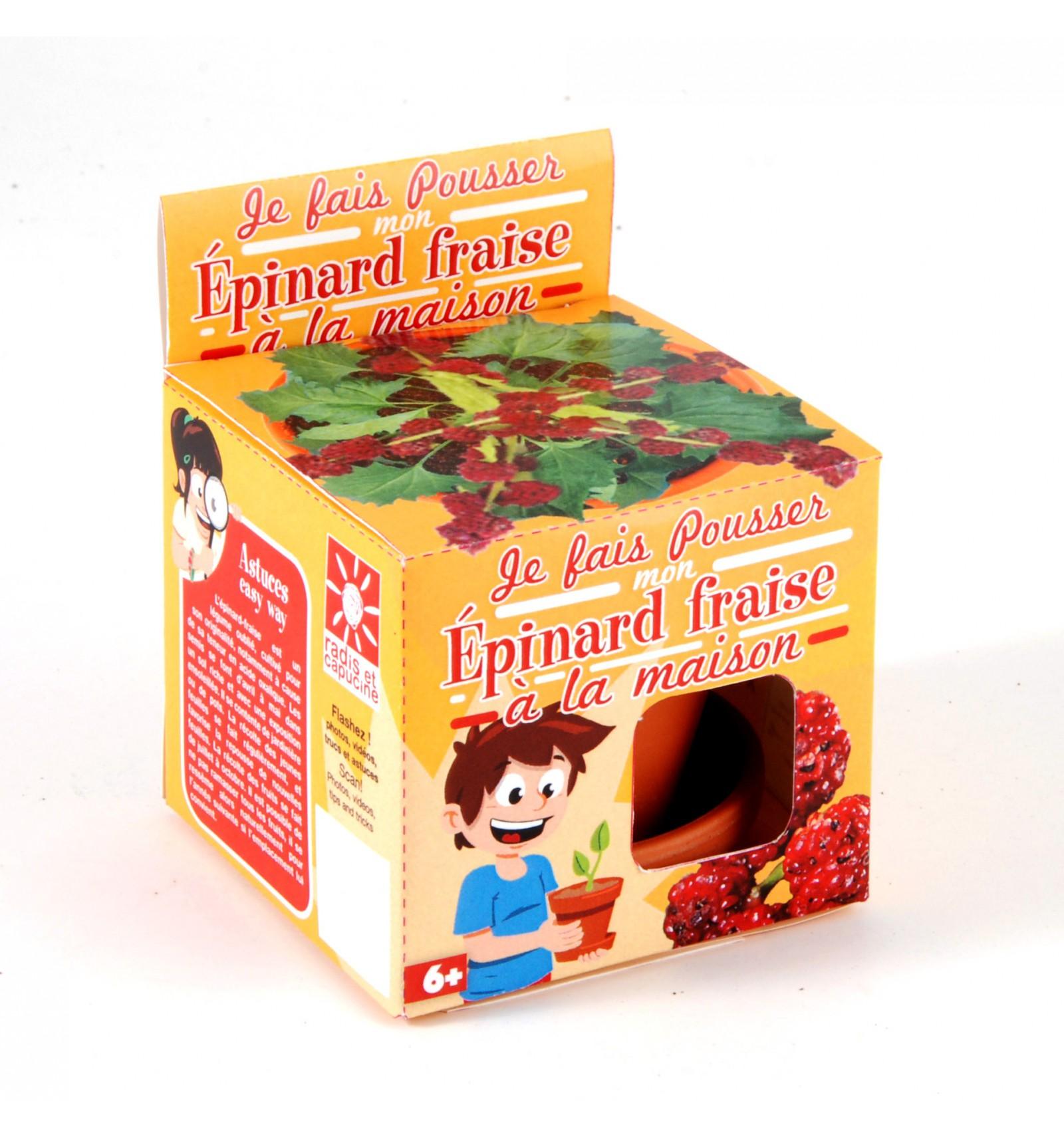 Mini zahrádka - Veselý květináč - Jahodový špenát
