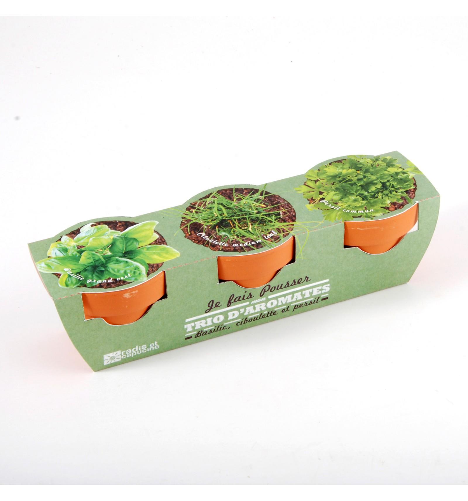 Mini zahrádka - Trio Mini květináče s bylinkami