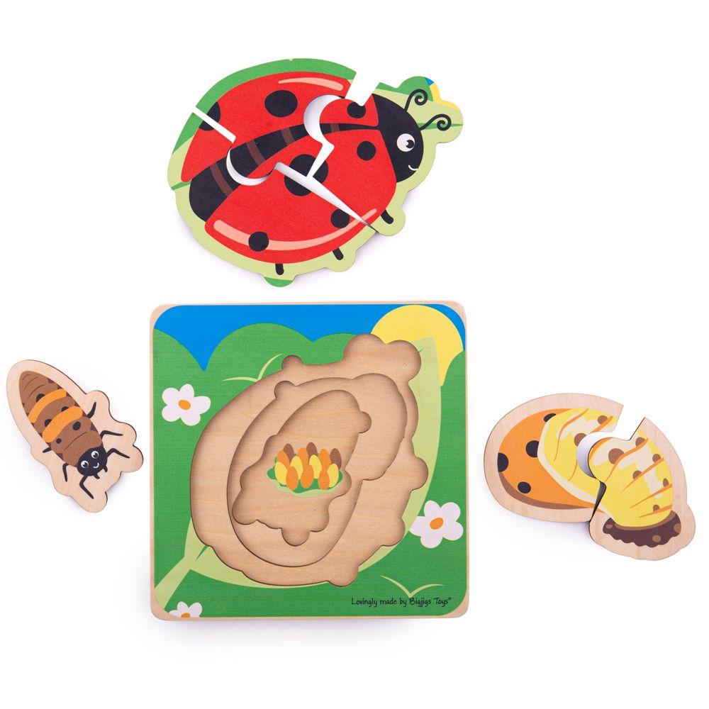 Bigjigs Toys Vkládací puzzle životní cykly berušky