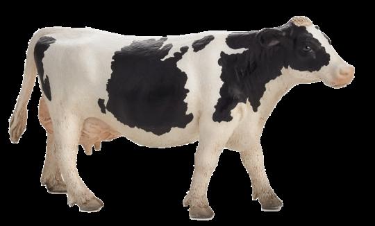 Mojo Animal Planet Kráva holštýnská