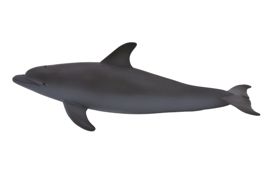 Mojo Animal Planet Delfín skákavý