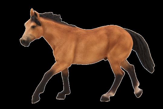 Mojo Animal Planet Kůň plavák