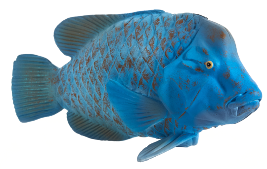 Mojo Animal Planet Groper modrý