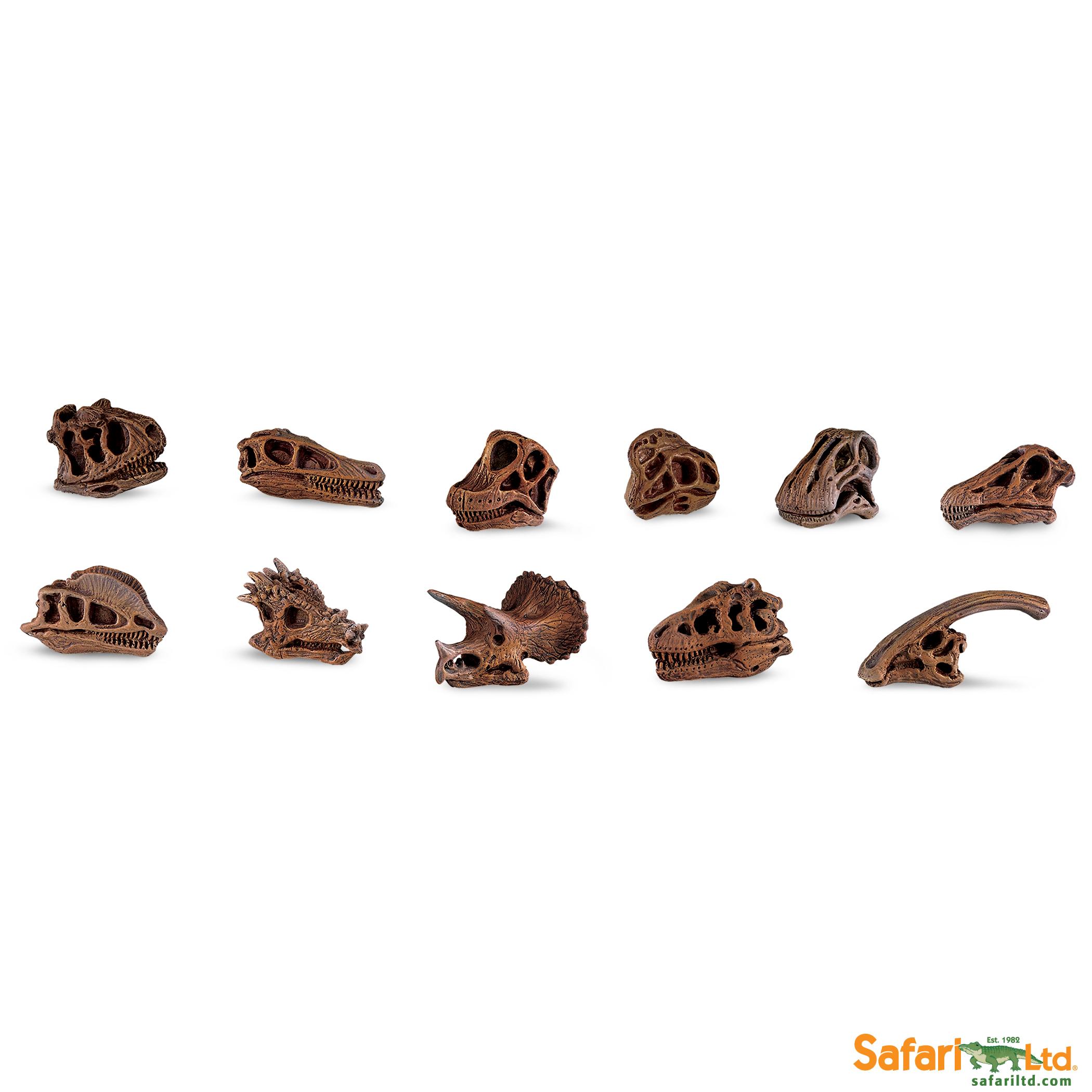 Safari Ltd - Tuba - Lebky dinosaurů