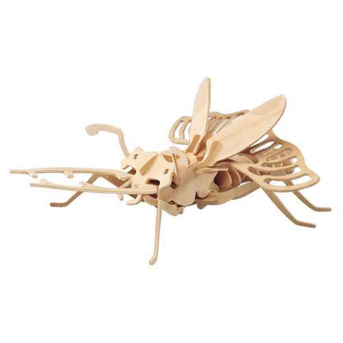 Woodcraft Dřevěné 3D puzzle brouk