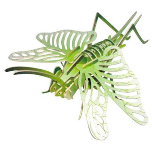 Dřevěné 3D puzzle dřevěná skládačka hmyz - Koník polní EC027