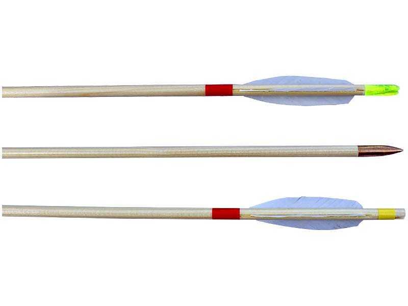 Šíp dřevěný EXTRA 8/600mm, peří