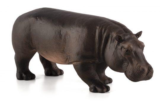 Mojo Animal Planet Hroch samice