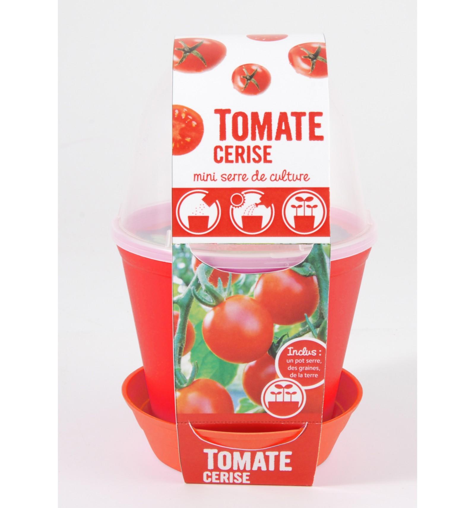 Mini zahrádka - Květináč Bell s Cherry rajčaty
