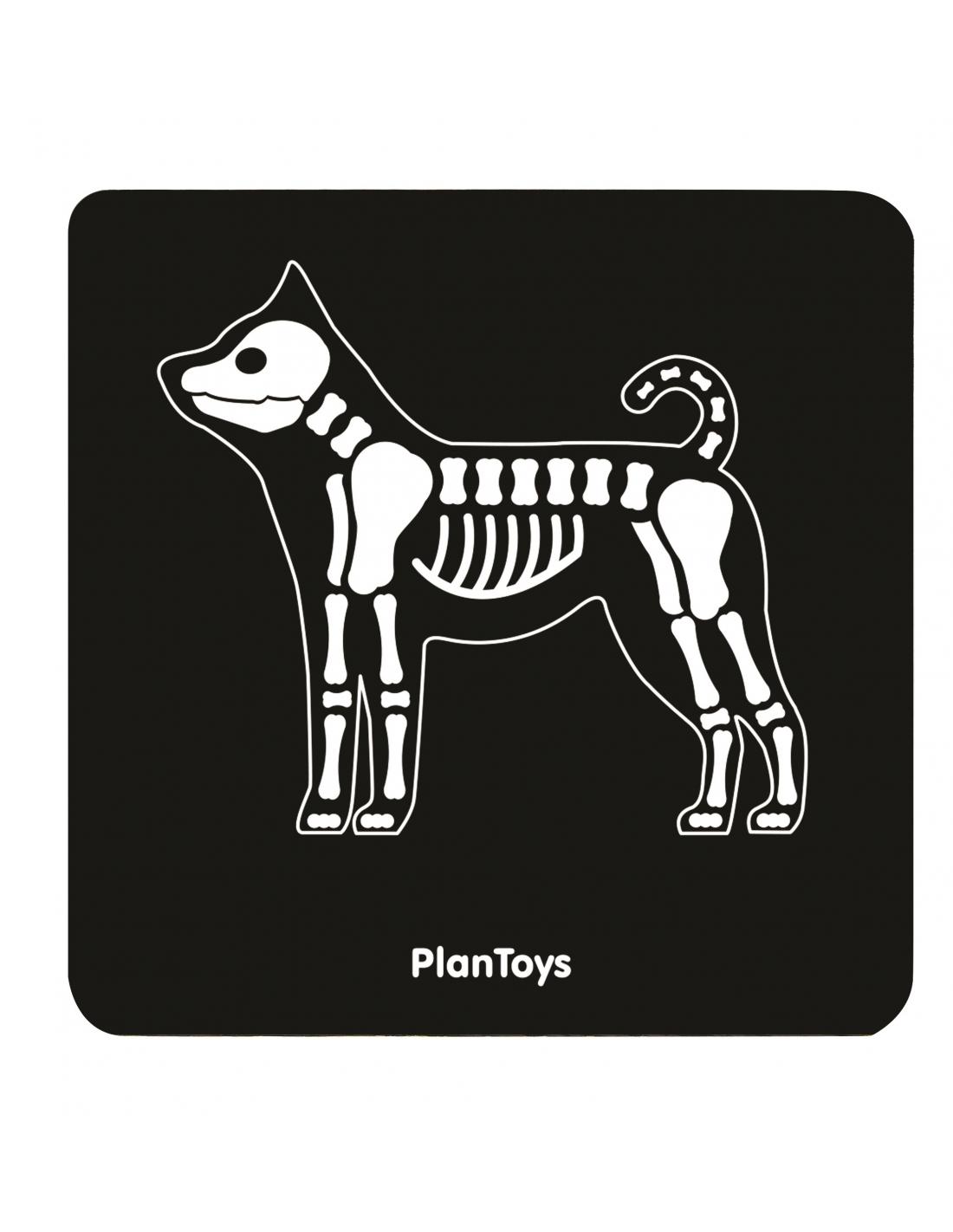 PlanToys Veterinářská sada